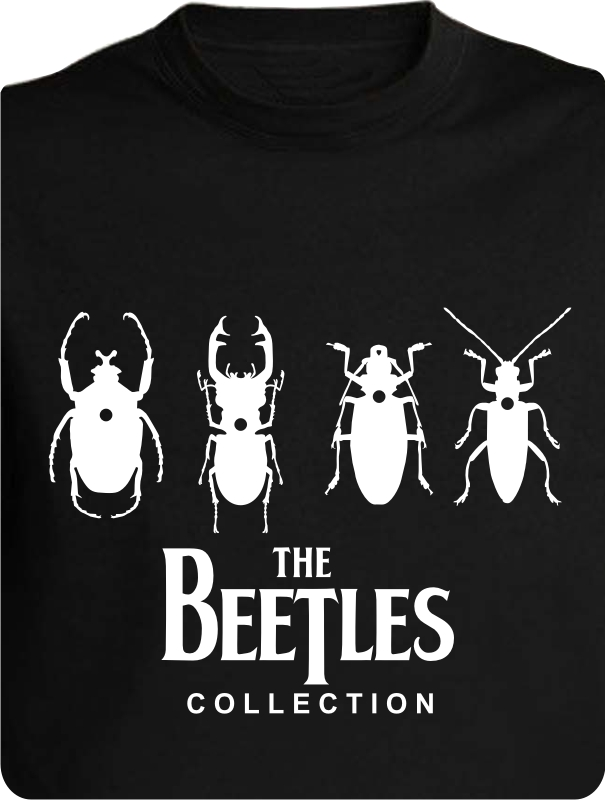 BEETLES COLLECTION